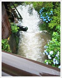 雨の小鹿田 皿山